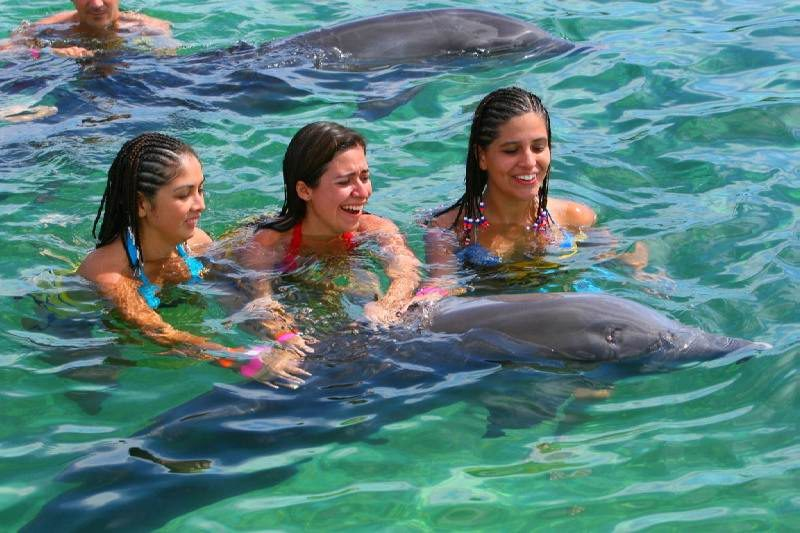 Экскурсии в Доминикане в Пунта Кана