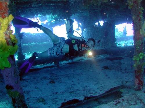 OLYMPUS DIGITAL CAMERA - Дайвинг с дельфинами и акулами, путешествие по подводным туннелям на островах Бимини