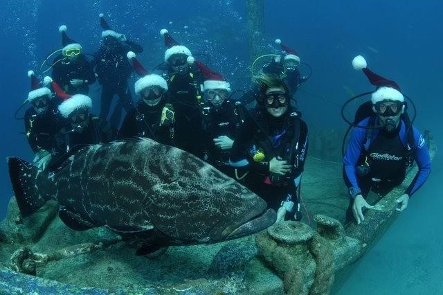 best-diving-place