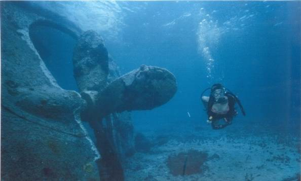 Bimini Barge - Дайвинг с дельфинами и акулами, путешествие по подводным туннелям на островах Бимини