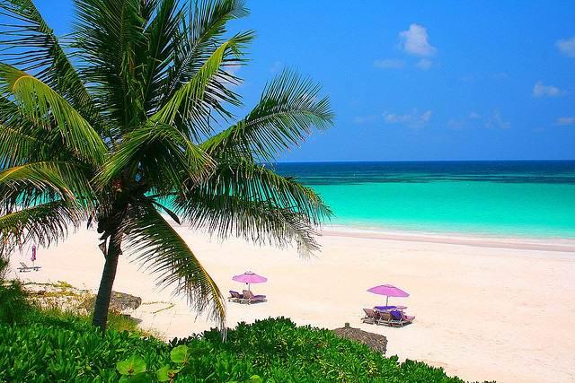 Пляж находится на острове Харбор. - Эти фото убедят вас, что остров Харбор – идеальное место для отдыха на Багамах
