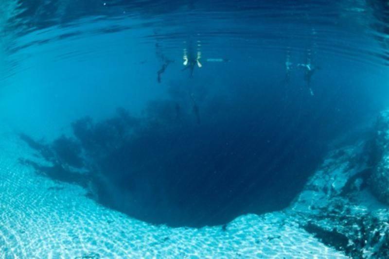 noticia-24_21 - Узнайте всё о дайвинге на Багамах - самом лучшем