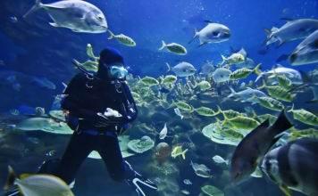 остров Кэт на Багамах