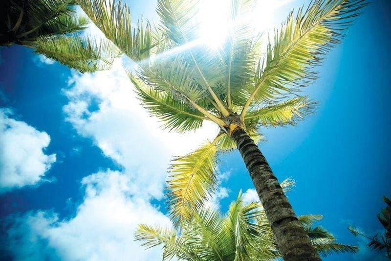 Погода на Багамах по месяцам - всегда комфортно