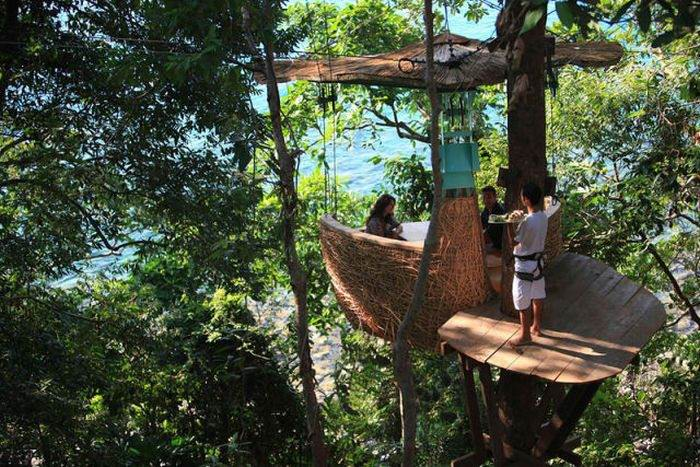 - Обед на вершинах деревьев на острове Ко Куд