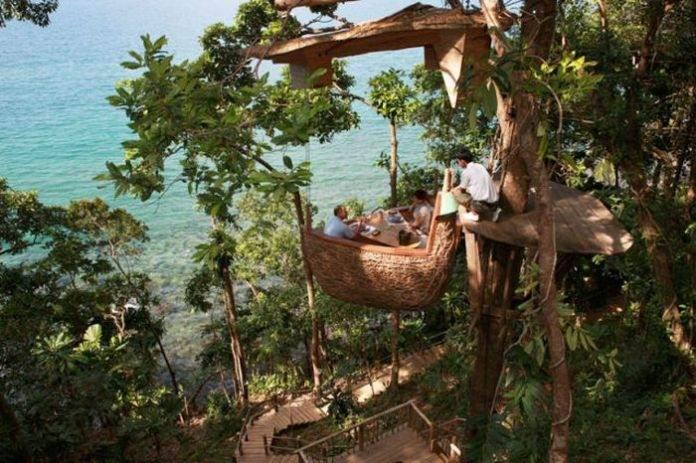 ресторан на деревьях Тайланд