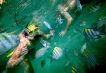 снорклинг на Багамах