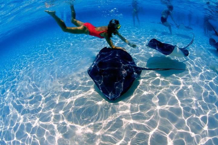 marinarium - Экскурсии в Доминикане в Пунта Кана