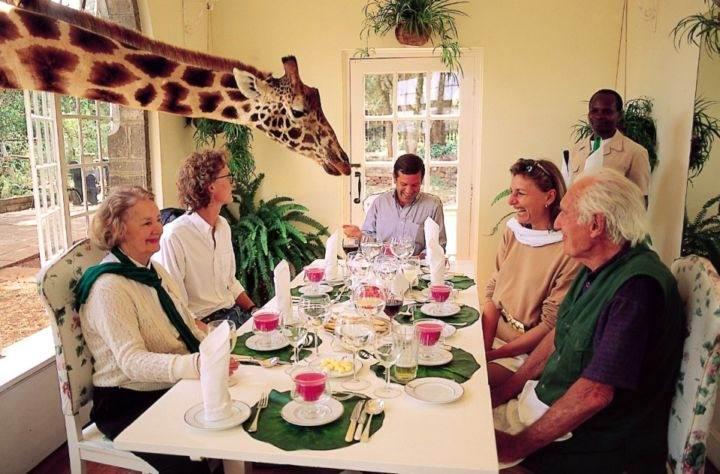 необычный ресторан Africa-GiraffeManor - Самые необычные рестораны мира