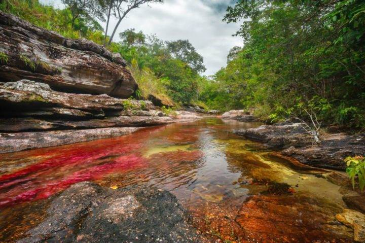 Cano-Cristales-el-rio-de-colores-en-La-Macarena-Meta - 10 лучших экзотических мест для путешествия