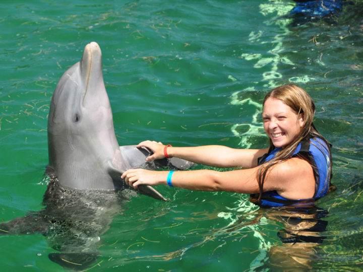 Dolphin-Explorer Маринариум Пунта Кана - Несколько советов, как лучше отдохнуть и развлечься в Пунта-Кана
