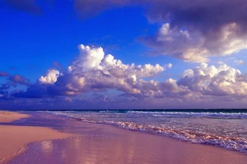 Экзотические пляжи мира Harbour pink beach