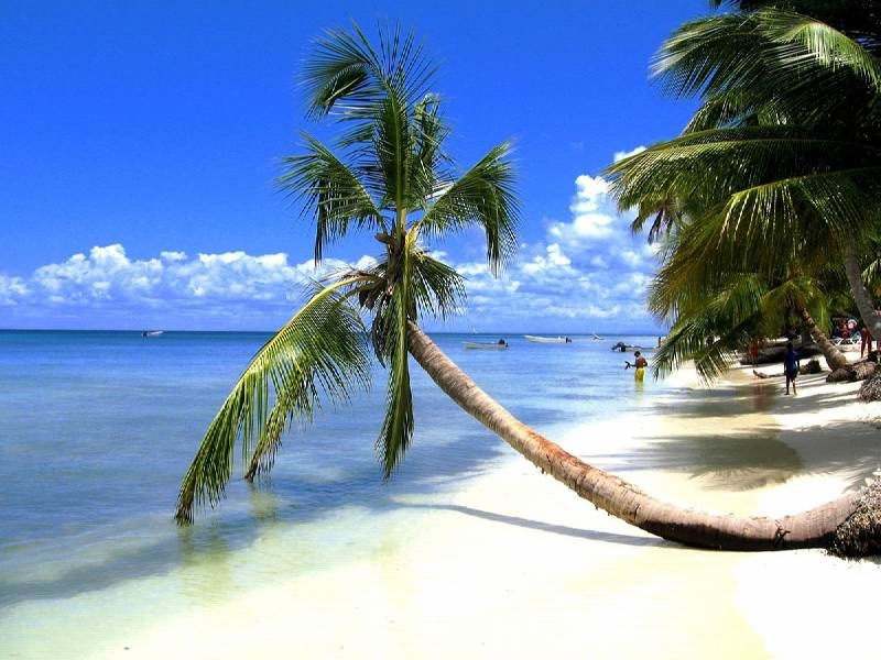 Экскурсия на остров Саона - красивейшее место Доминиканы