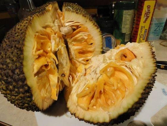 Фрукты Тайланда Jack-Fruit