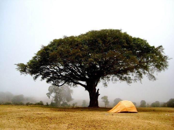 Ngorongoro-Crater-in-Northern-Tanzania - 10 лучших экзотических мест для путешествия