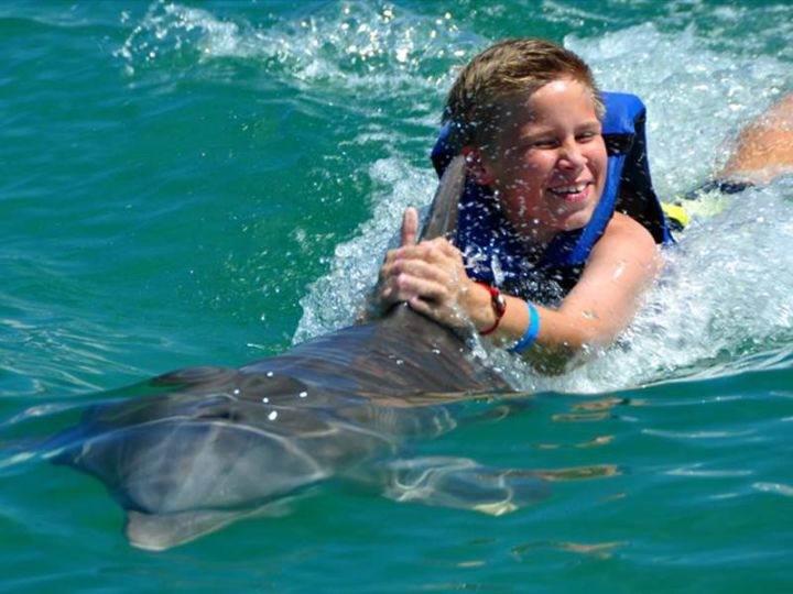 Катание на делфине Пунта кана Punta-Cana-Dolphin-Explorer Маринариум - Несколько советов, как лучше отдохнуть и развлечься в Пунта-Кана