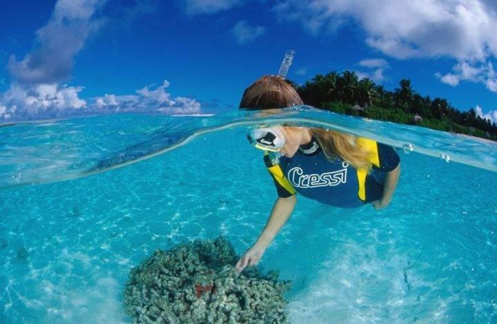 Лучшие места для снорклинга Багамы - Фотографии 10 лучших мест в мире для снорклинга