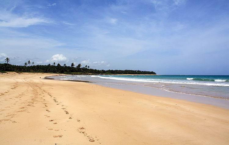 Uvero Alto Best Beaches in Punta Cana