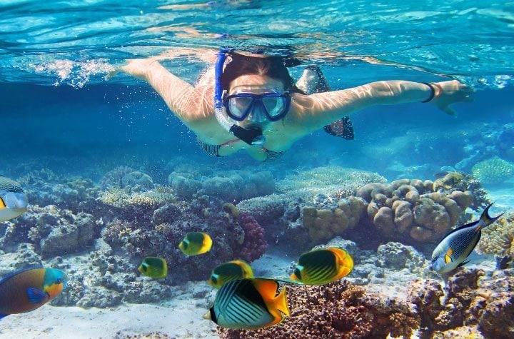 bahamas снорклинг на Багамах - Краткий путеводитель по достопримечательностям Багамских островов