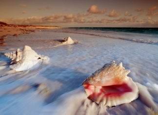 Cat Island, Bahamas, Caribbean Sea.
