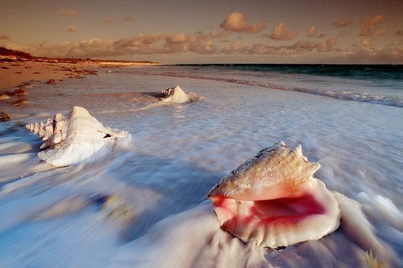 Идеально для тропического путешествия - остров Кэт на Багамах