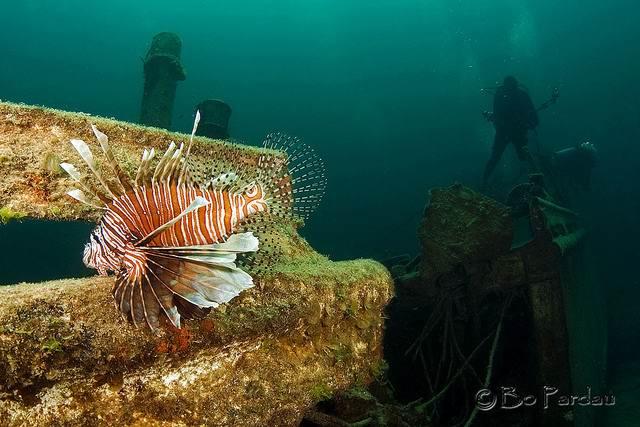 острова Эксума Austin-Smith-Wreck