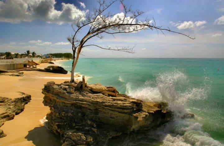 """Легендарный """"Фонтан молодости"""" и другие достопримечательности острова Бимини на Багамах - Легендарный """"Фонтан молодости"""" и другие достопримечательности острова Бимини на Багамах"""