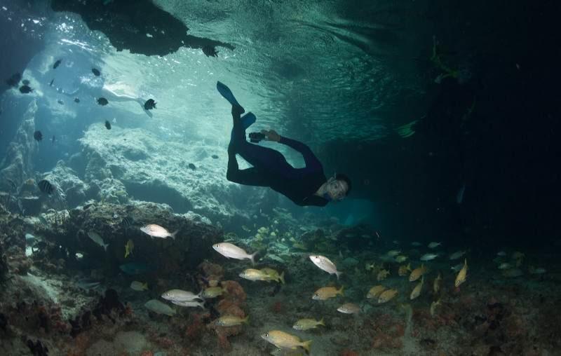 Представляем лучшие места для дайвинга на островах Эксума на Багамах