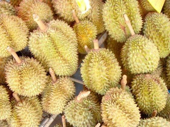 Фрукты Тайланда durian