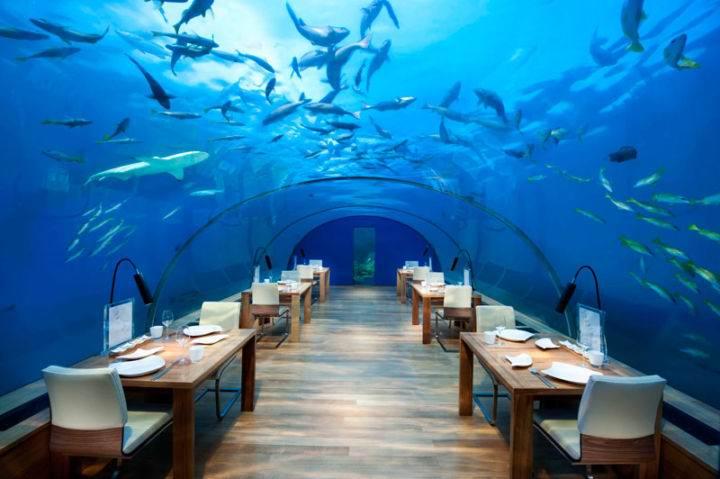 maldioves-ithaa-underwater-restaurant - Отдых на Мальдивах – всё включено и для всех