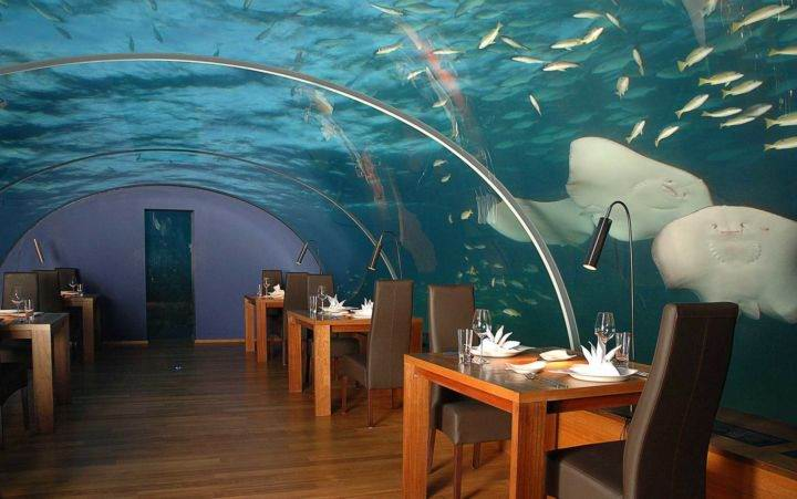 подводный ресторан maldives-ithaa-underwater-restaurant