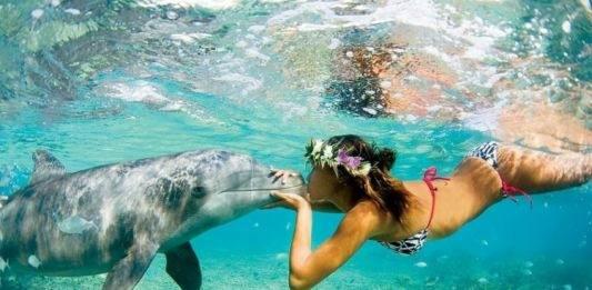 Любуемся Мальдивами под водой