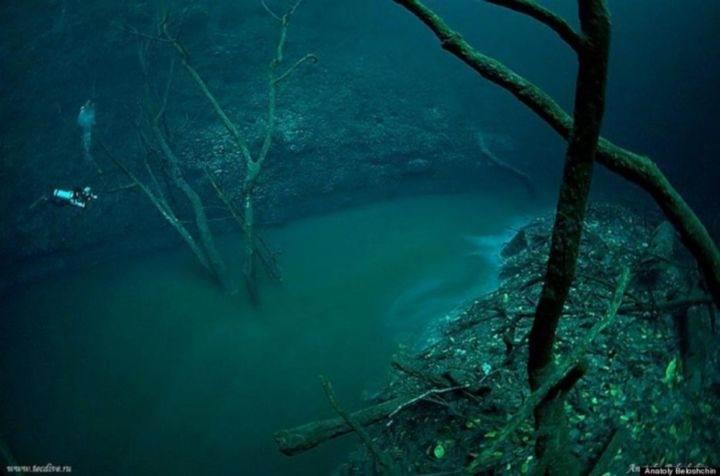 подводная река - 39 удивительных и сумасшедших природных явлений - часть 3