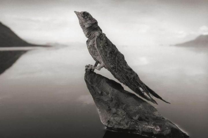 солёное озеро - 39 удивительных и сумасшедших природных явлений - часть 3
