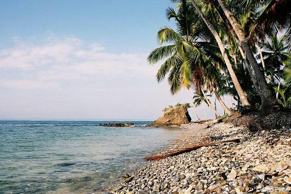 Активный отдых на полуострове Самана - Активный отдых на полуострове Самана