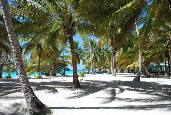 saona-bounty пляж Баунти