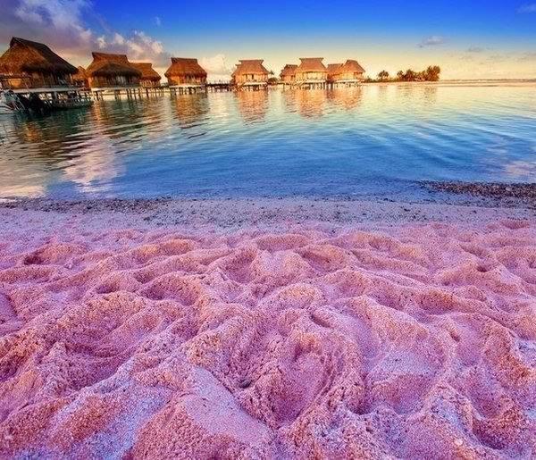 розовый пляж на острове Харбор - Чего можно ожидать от отдыха на туристических Багамах?