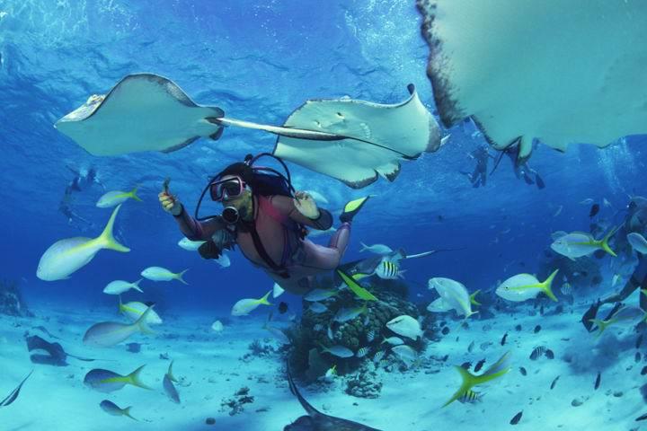 симиланские острова - Великолепные Симиланские острова - жемчужина Тайланда
