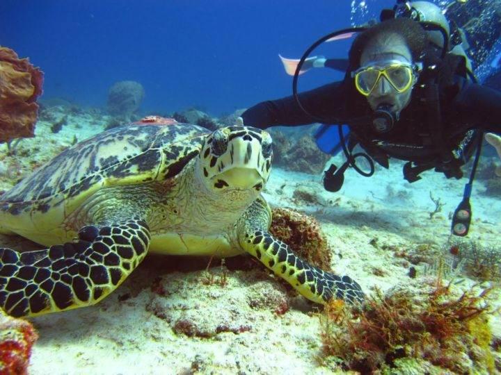 симиланские острова фото - Великолепные Симиланские острова - жемчужина Тайланда