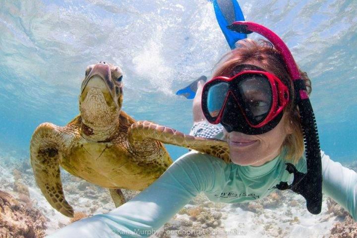 Лучшие места для снорклинга Большой барьерный риф - Фотографии 10 лучших мест в мире для снорклинга