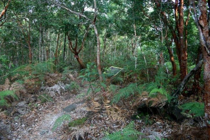 national-park-thailand треккинг