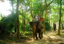 Треккинг — активный туризм в Тайланде