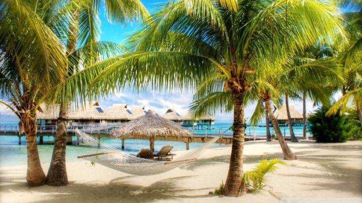 пляж доминиканы - Выбираем отдых: Куба или Доминикана?
